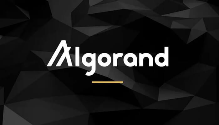 الگورند (ALGO)